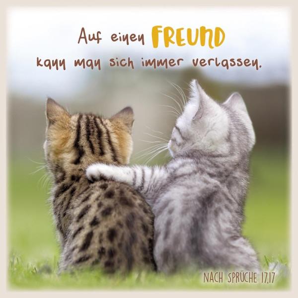 Metalltafel 'Auf einen Freund kann man ...'