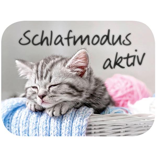 Katze im Wollkörbchen