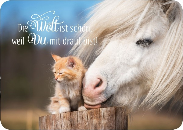 Postkarte 'Die Welt ist schön'