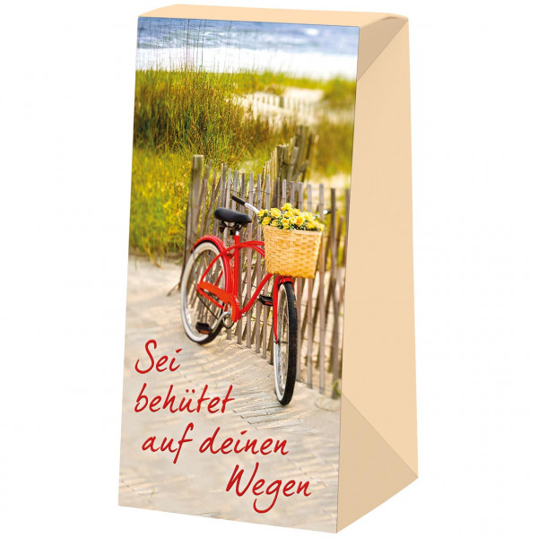 Fahrrad / Zaun / Meer / Dünen