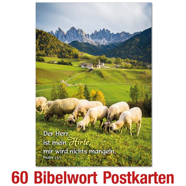 Spar-Paket: Bibelworte