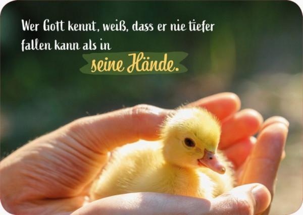 Postkarte 'Wer Gott kennt, weiß, dass er nie tiefer fallen kann, als in Gottes H